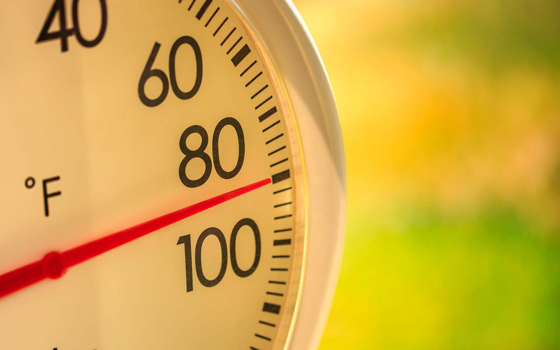 Blog - 10 tricks to beat the heat of summer